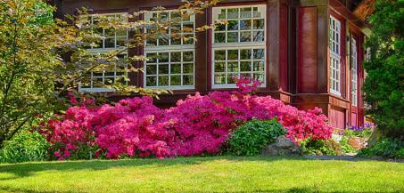 Najważniejsze zasady przy projektowaniu ogrodów