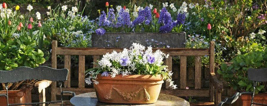 Ogród Na Balkonie Czasnawnętrze