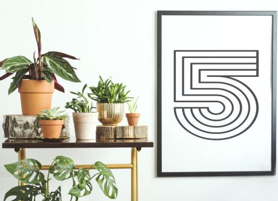 Urban jungle, czyli modne kwiaty w Twoim domu